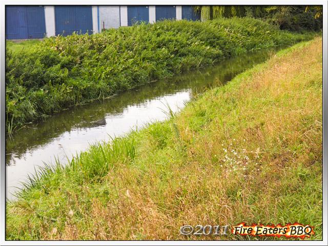 [Bild: Garten1011_04.JPG]
