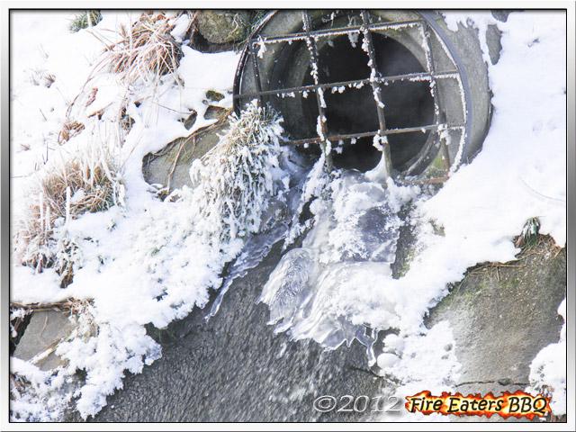 [Bild: Winter0212_03.JPG]