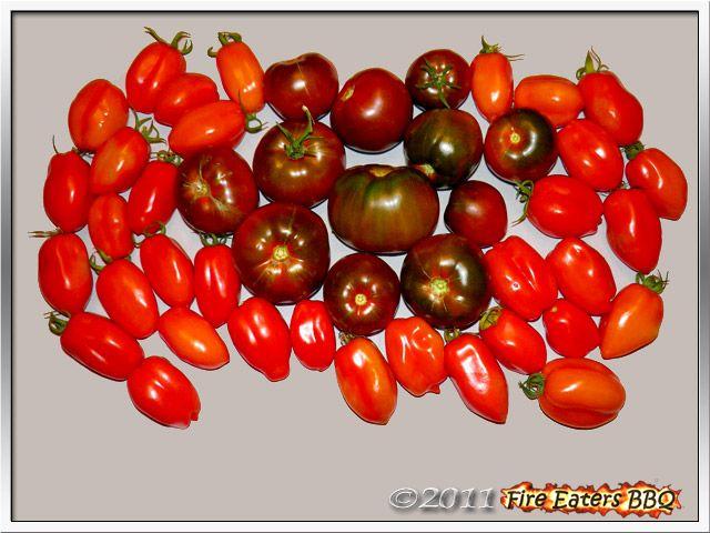 Bild - eine Ernte von San Marzano und Black Russian Tomaten