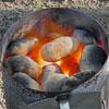 Kokosbrikett-Test - Artikelbild