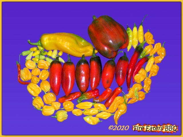 Eine weitere kleine Ernte